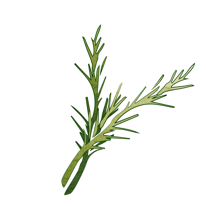Super Seed Rosemary Flavor